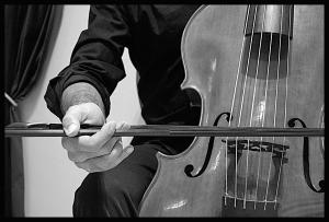 Viola da gamba 03